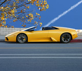 Yellow modern sporty car, fall in California poster