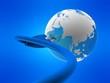 globus und kabel