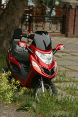 close-up of red motorcycle (motorbike)
