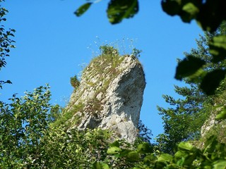 limestone rock with grass