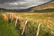 Posts 2 - Snowdonia
