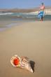 Mujer en la playa con concha