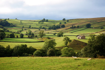 Wharfedale in the Yorkshire dales