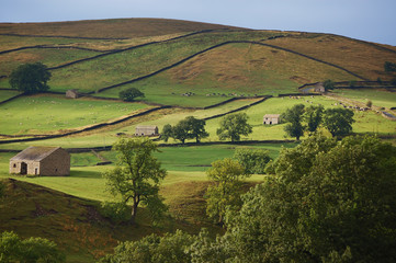 Fields form a pattern in the Yorkshire dales