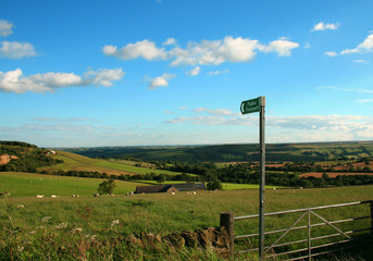 the dales uk