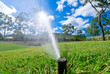 canvas print picture - Sprinkler watering lawn grass
