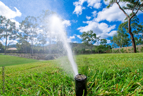 canvas print picture Sprinkler watering lawn grass