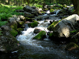 Cold and crystal clear wild brook full of boulders  poster