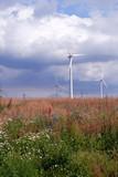 energie und umwelt poster