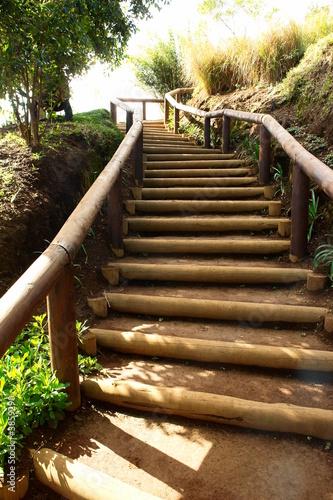 escalier nature, marche en terre et bois