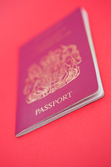 Passport shot - shallow dof