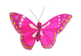 Pink sparkly butterfly, isolated on white. poster