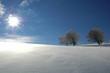 Winterlandschaft 3