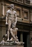 Sculpture Palazzo Vecchio poster
