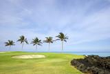 Golf Course on Lava Ocean Shore of Kona Island, Hawaii poster