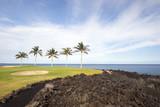 Golf Course on Black Lava Ocean Shore of Kona Island, HI poster