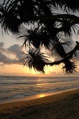 Anochecer en Sri-Lanka