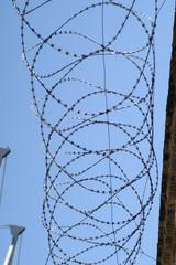 prision-4346