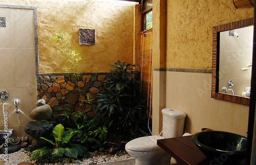 an elegant bathroom with plants and natural light