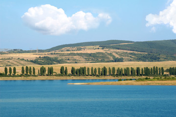 summer landscape with lake, many trees and fields