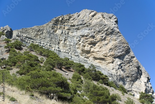 Mountain. An acting rock with vegetation in the foreground