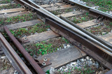Image shows neglected railway tracks
