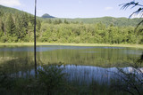 Peaceful Frazier Valley pond poster