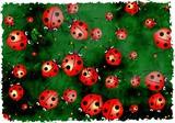 grunge ladybugs poster