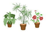 Decorating Plants with Clipping Paths