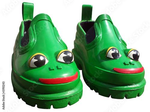 Leinwandbild Motiv chaussures grenouille