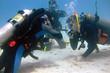 Diver's exam