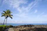 Hawaiian Volcanic Coast of Kona Island poster
