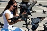 The Venetian pigeons poster
