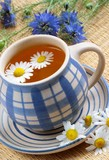 Cup of herbal tea - chamomile and flowers poster