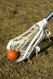 Lacrosse Ball and Stick poster