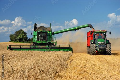 Getreideernte - 3926006