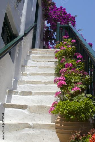 staircase with flowers street scene greek islands mykonos - 3931064