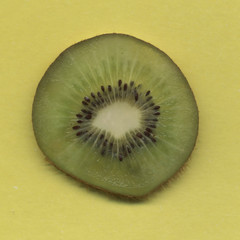 Kiwi on the yellow background