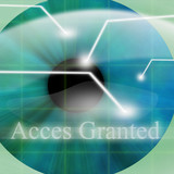 Access granted after eye scan poster