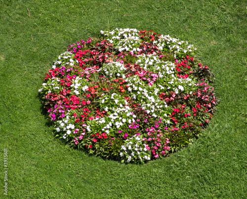 Parterre de fleurs rond photo libre de droits sur la banque d 39 images image 3935601 - Fleur de parterre ...