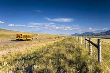 Three school buses on the road