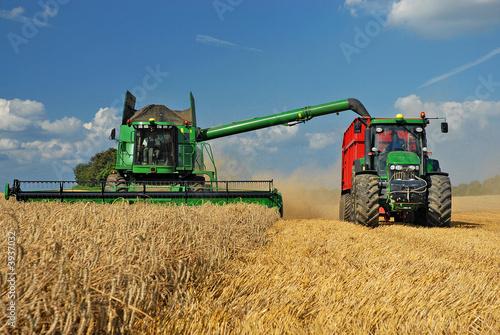 Getreideernte - 3937032