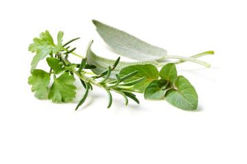 Fresh-picked Herbs