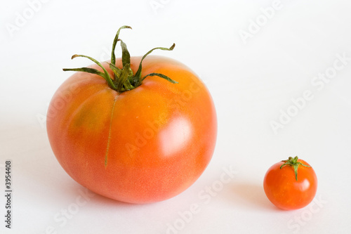 big and small red tomatos