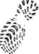 Trainer footprint