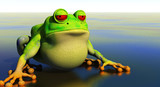 frog cartoon in reflective pond poster
