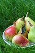 Pears on grass
