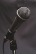 Musicians and entertainers microphone