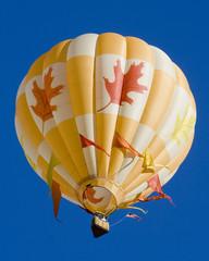 Hot Air Balloon 0743
