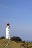 Hiddensee, Leuchtturm, Dornbusch